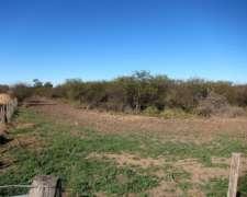 2900 Ha al SUR de Gancedo Agricola Ganadero