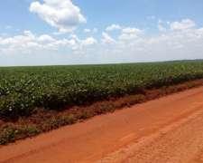 Campos Agrícolas para Soja y Arroz en Paraguay
