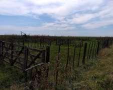 Vendo 1380 Has. en San Joaqui Agrícolas-ganaderas Sobre Ruta