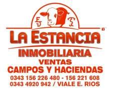 45 Vaquillas Preñadas en Villaguay
