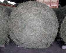 Vendo Rollos de Alfalfa y Moha