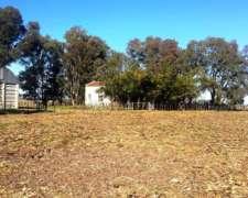 600 Has. Agricolas - Ganaderas En Junín