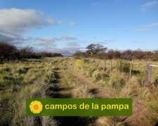 La Pampa - Venta Estancia 6.000 Ha Bosque Caldén - Cría
