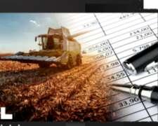 Panorama de los Impuestos en las Empresas Agropecuarias