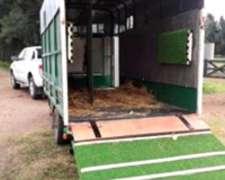 Transporte De Caballos - Consultar