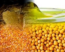 Aceite De Soja / Expelller /maíz /soja