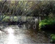 Quirno Costa Campos Vende 170 Has. En Sierra De Los Padres.