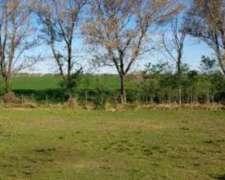 Vendo Campo en Anguil, la Pampa