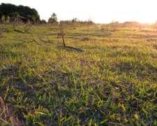 Formosa. Vendo Establecimiento Agro-ganadero 14.200 Has.