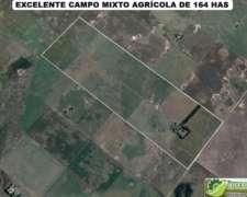 Excelente Campo Mixto Agrícola en San Cayetano. Consultar