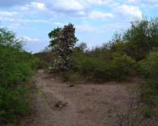 Campo Ganadero Zona Caballa Catamarca