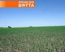 100 Has Agrícolas en General Villegas, Sobre Ruta
