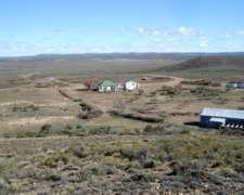 Sc0038 Venta Ganadero 30200 Has Magallanes , Santa Cruz