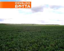 2.600 Has Chajan Córdoba, a Solo U$S 3000, 3 Años de Plazo