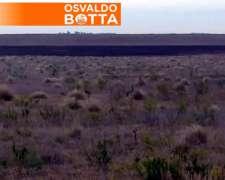 260 Hectáreas en Colonia Sabadel, la Pampa