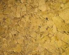 Vendo Expeller Y Aceite De Soja Desgomado (pcia Bsas)