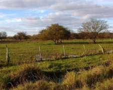 La Criolla, Pcia. de Santa FE