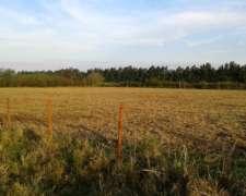 Vendo 5 y 3/4 Hect. (zona Rural Monte Vera)
