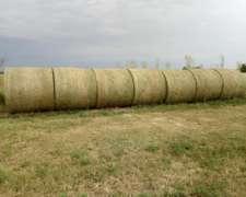 Rollos de Alfalfa 3469694002