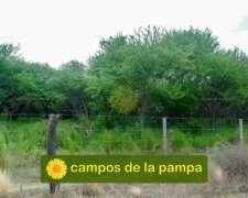 La Pampa - Venta 2500 Ha Dpto Rancul - Buena Infraestructura