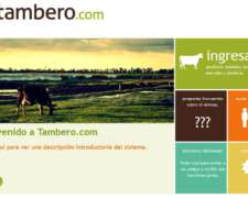 Tambero Premium - Tambero.com