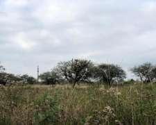 Campo para Explotacion Ganadera - Grutly