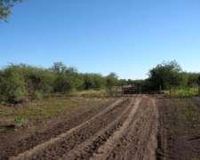 Campo Ganadero a Desarrollar en Suncho Corral