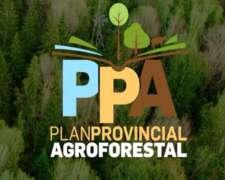 Plan Agroforestal Córdoba No Pague Impuestos De Más