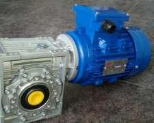 Motorreductor STM WMI 63 Relac 1/60 con Motor de 0.75hp 380v