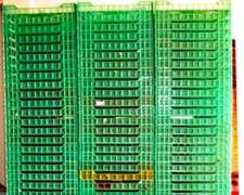 Wencos, Bandejas Para Arandanos/frutillas/berries Liquido