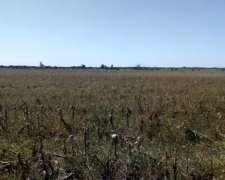 90 Ha Agrícolas Villa Mantero Entre Rios