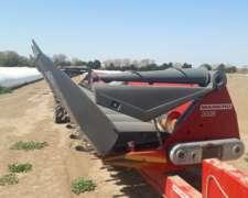 Maicero Mainero Serie 2008 de 16 a 52cm