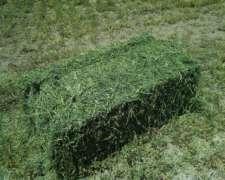 1fardos Alfalfa Calidad Premium