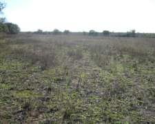116 Ha Agricolas Sobre Asfalto.