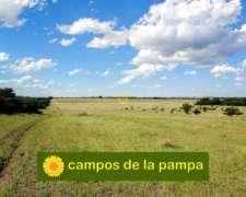 La Pampa - Venta Campo 1.250 Ha Bosque de Calden y Cultivo