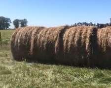 180 Rollos de MOA 600kg Aprox