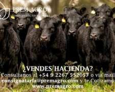 Consignación de Hacienda Vacuna