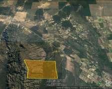 Xcepcional Campo de Cria, Tuclame, Escr, Agua, Alambrado