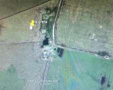Campo Mixto en Malbran