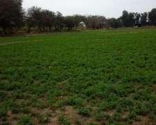 Campo Capitalizar Hacienda Santiago Del Estero