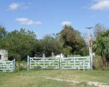 Campo En Venta - Cnel Brandsen- Estacion Gomez