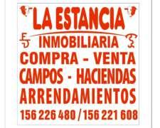 1280 Hectareas Mercedes Corrientes