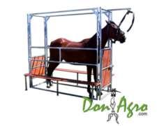 Manga Sanitaria Para Equinos