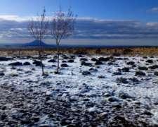 Hermoso Campo Ganadero, Agricola, Turistico PIE Cordillera