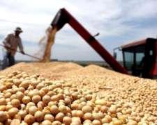 Venta de Cereal - Trigo, Avena, Alpiste y Soja