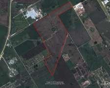 Campo Agricola 150 Has Campana, Buenos Aires Industrial