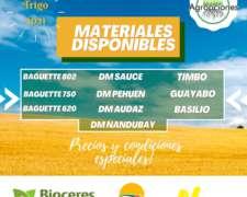 Especial Semillas de Trigo - los Mejores Materiales