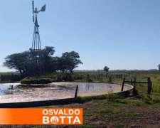 808 Hectáreas en Ines Indart, Salto Buenos Aires