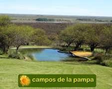 La Pampa - Pedidos de Campos para Arrendamiento Agrícola