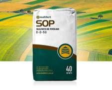 Sulfato De Potasio - Sop